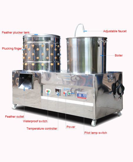 Automatic Small Scalding and Plucking Combined Machine for Small Scale Poultry Slaughtering