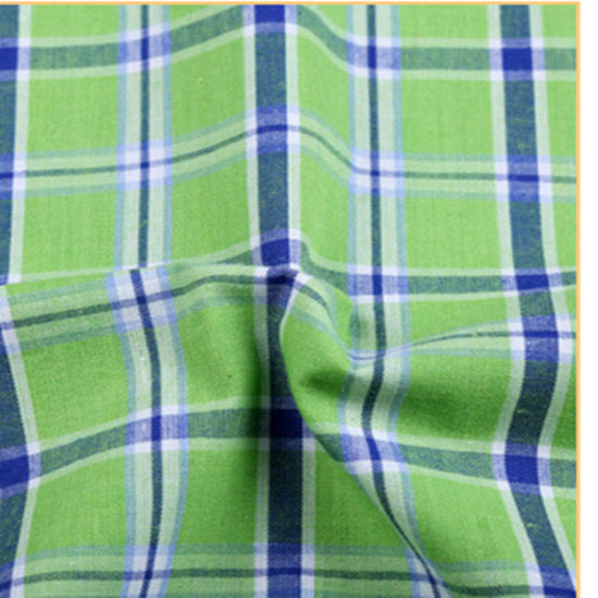 100% Cotton Women Yarn Dyed Shirt Fabric pictures & photos