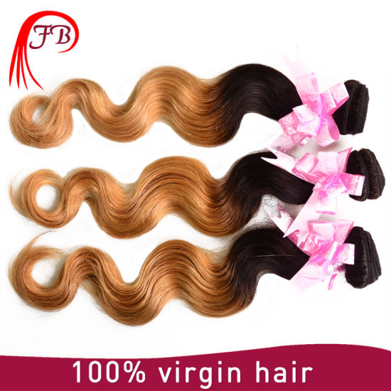 Machine Made Wefts Remy Virgin Human Ombre Brazilian Hair pictures & photos