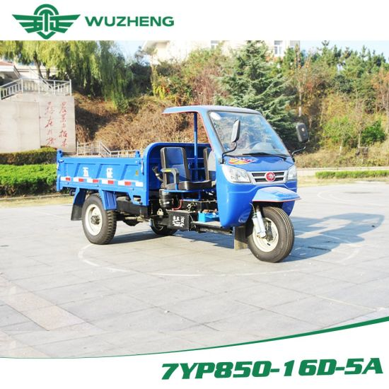 Open Waw Diesel Motorized Cargo Three Wheel Truck for Sale From China pictures & photos