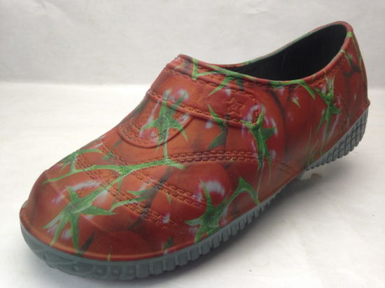 Korea Shoes for Lady and Men with OEM Printing (21fv1225) pictures & photos