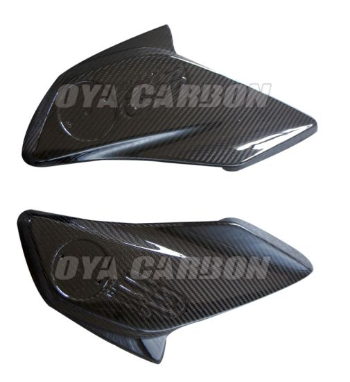 China Carbon Fiber Side Panels for BMW 1200GS -12c 2013