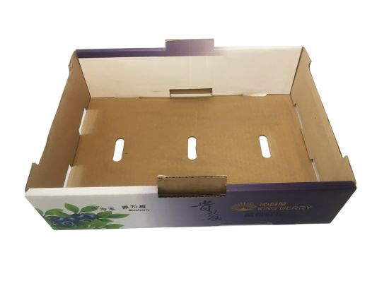 Cheap Price Fruit Packaging Corrugated Cardboard Box for Shipping