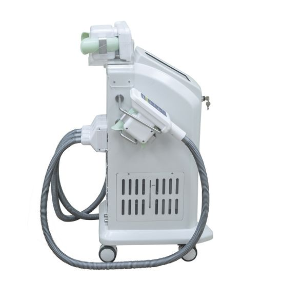 2017 China Manufacturer Cryolipolysis Machine for Sale/Criolipolisis Machine Cryolipolysis pictures & photos