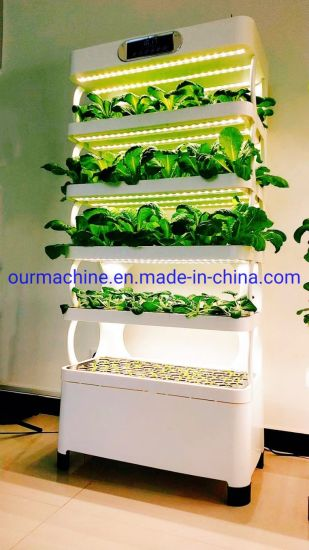 Indoor Intelligent Hydroponics System Soilless Cultivation Planting