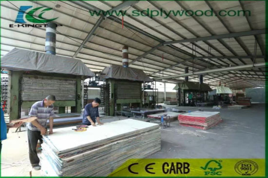 Building Material of WBP Marine Plywood/Film Faced Plywood pictures & photos