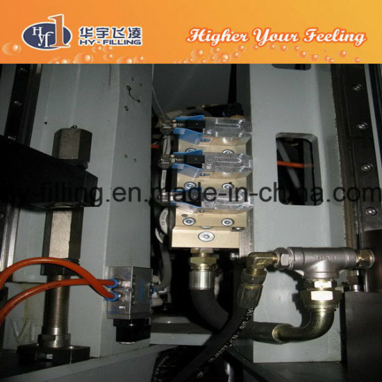 Rotary Bottle Blow Moulding Machine