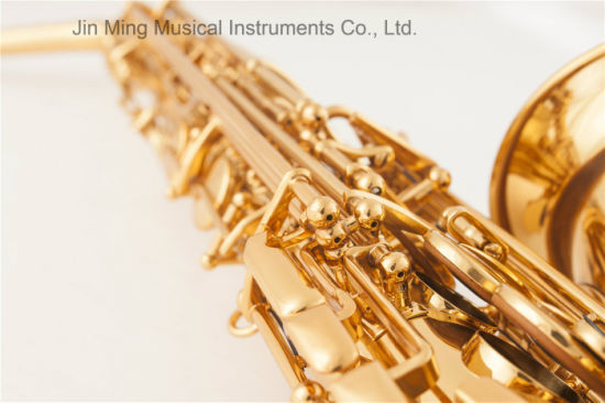 Best Quality Alto Saxophone Like Selmer, Electrophoresis pictures & photos
