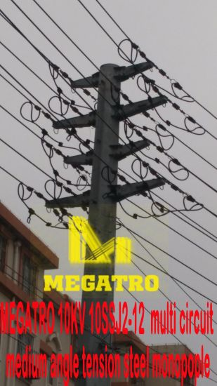 China Megatro 10kv 10ssj2-12 Multi Circuit Medium Angle Tension