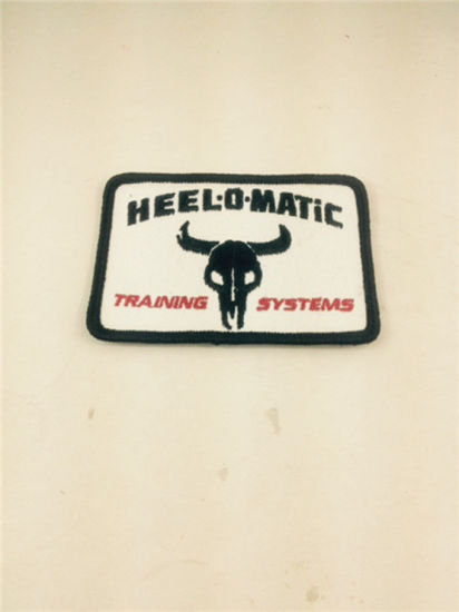 Garments Accessories Embroidery Iron Patch/Applique Logo