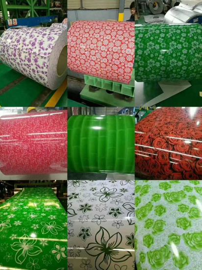 PPGI PPGL Color Coated Pre-Painted Stainless Galvanized Steel Sheets in Coils