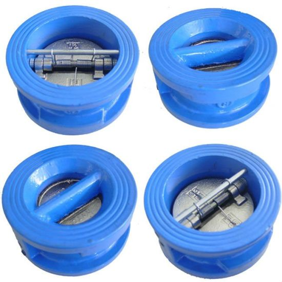 DIN3356 Swing Check Valve pictures & photos