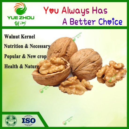 New Crop Walnut Kernels for Hot Sale with High Quality pictures & photos