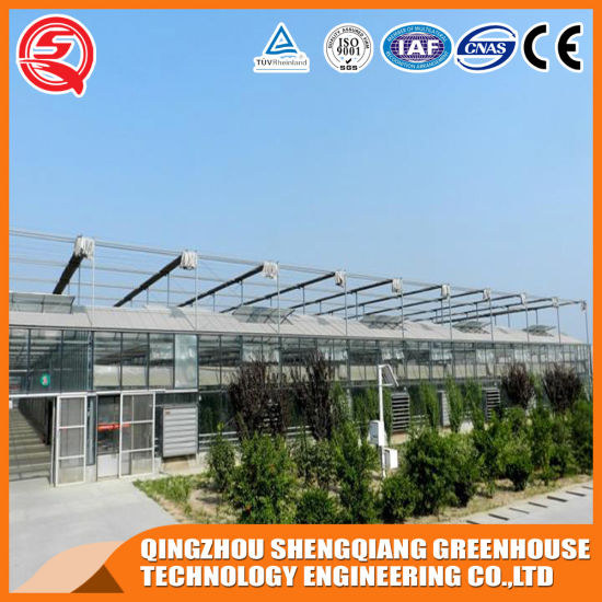 Commercial Multi-Span Garden Glass Greenhouse with Hydroponic System