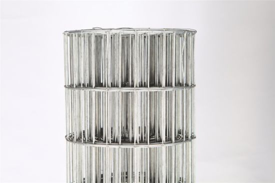 PVC Coating Building Material Welded Wire Mesh Fence Netting