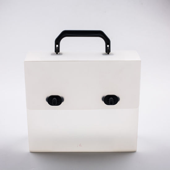 New Style Eco-Friendly Custom Print Cosmetic Frosted PP Plastic Box with Handle