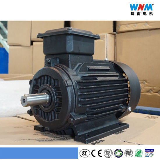 Wnm Ce and CCC Totally Enclosed Dual Speed / Three Speed / Four Speed Pole Changing AC 3 Phase Electric Motor for Pump Fan Conveyour Belt