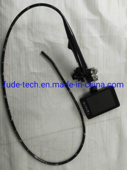 Portable Veterinary Endoscope/Video Gastroscope with Screen