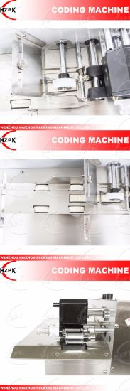 Iron Coder/Coding Machine for Date and Batch No. Coding From China pictures & photos
