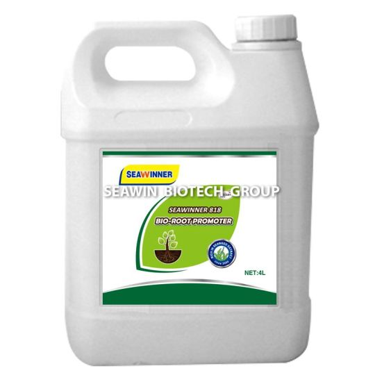 Bio Organic Fertilizer for Root Promoter (SEAWINNER 818 Bio-RootPromoter) pictures & photos
