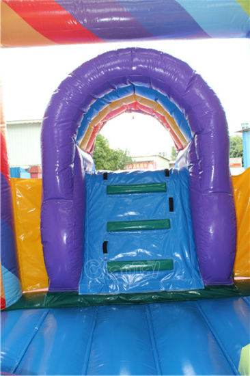 Flower Inflatable Jumpng Castle Bouncy Combo with Slide Chb751 pictures & photos