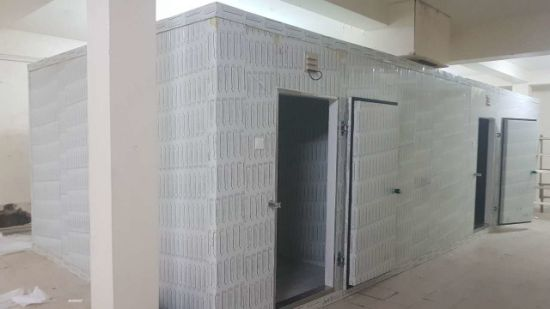China Restaurant Commercial Cold Storage Cold Room Walk