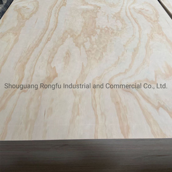 Poplar Plywood/Commercial Plywood/Furniture Used Plywood