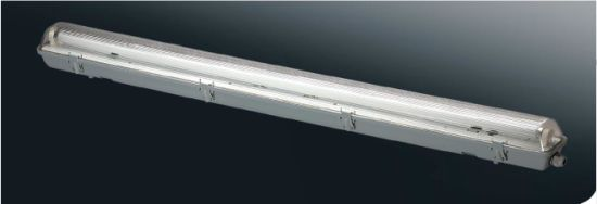 T8 Tri-Proof Light Light Fixture