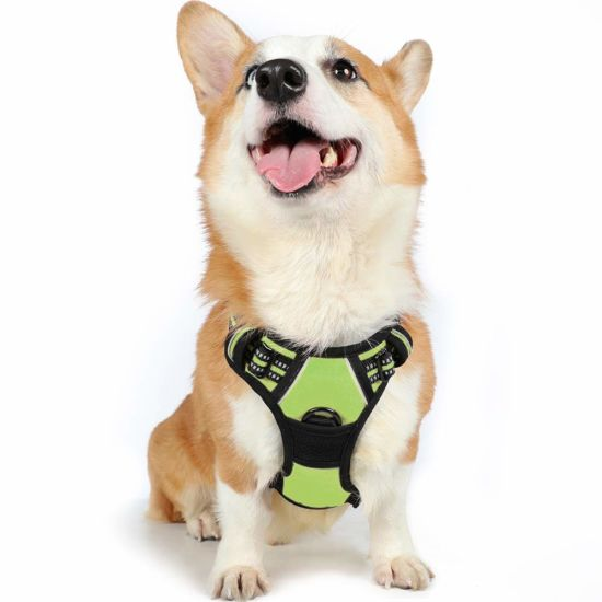 Pet Vest Harness 3m Reflective