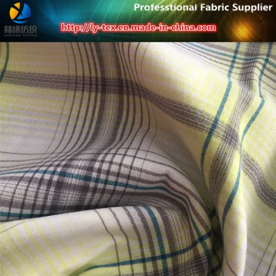 Polyester/Nylon Blended Yarn Dyed Jacquard Check Fabric for Garment (YD1165)