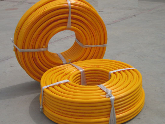 PVC Insulated Cable (PDW10) pictures & photos