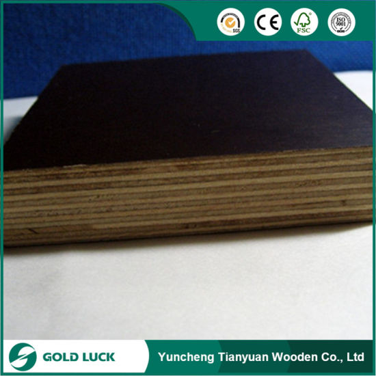 LVL, Lvb, Korinplex Plywood/ Black Film Faced Board Plywood pictures & photos