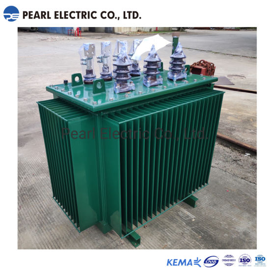 Peo-160kVA 22kv 3 Phases Oil-Immersed Distribution Transformer