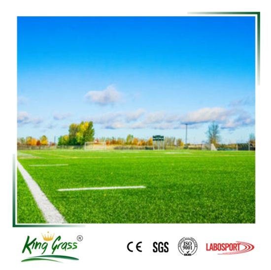 China Football Turf Carpet Artificial Grass for Indoor Soccer ...