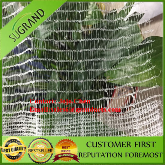 China Agriculture Plastic Anti Hail Net Hail Guard Net For