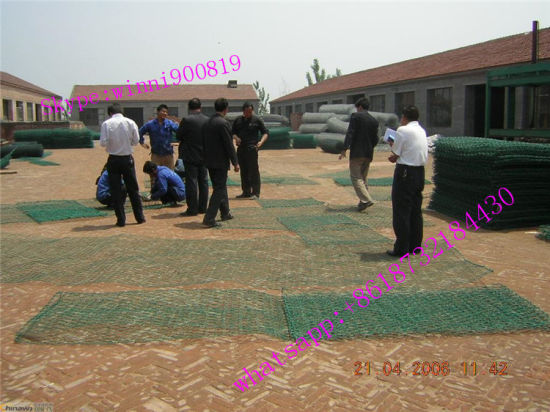Heavy Duty Hexagonal Stainless Metal Gabion Wire Mesh for Sale
