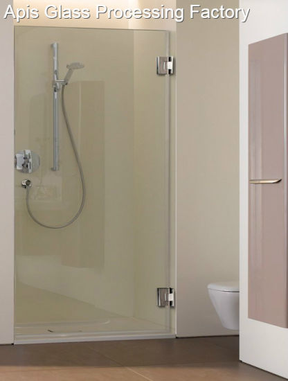 10mm Plain Frameless Single Clear Shower Glass Door Tempered