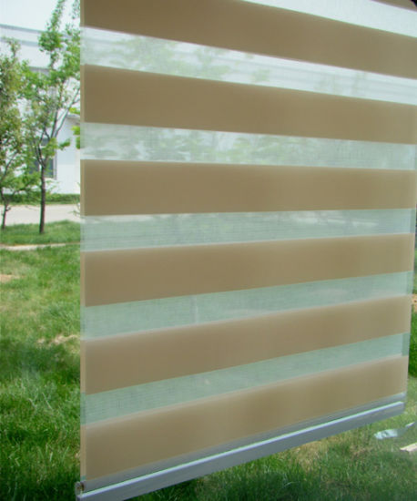Zebra Blind Different Color Roller Curtains pictures & photos