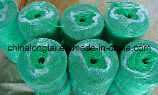 PP Film Reaper Binder Twisted Baler Twine (1---10mm) pictures & photos