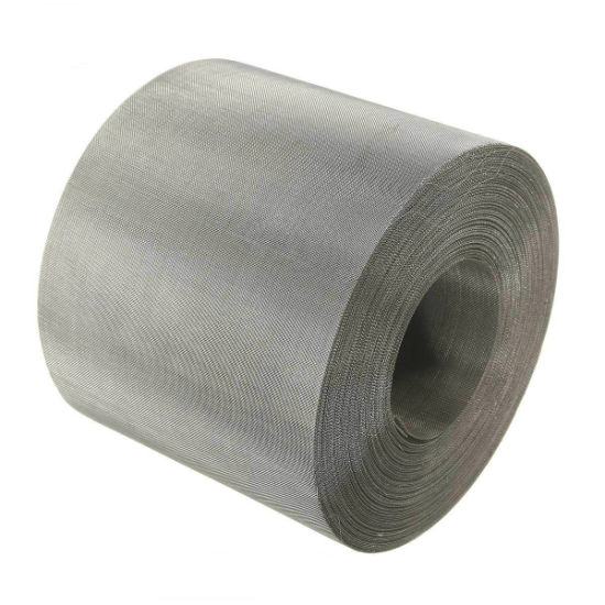 China Wholesales 304 304L 316 316L Plain/Twill/Dutch Weave Stainless Steel Wire Mesh Belt Filter pictures & photos