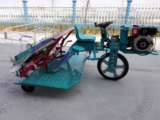 4 Rows Walking Type Rice Transplanter pictures & photos