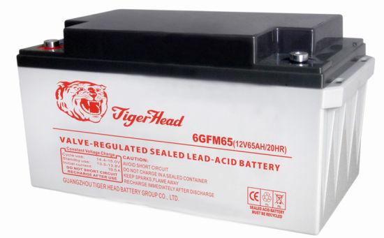 12V65ah Solar Deep Cycle AGM Gel Lead Acid UPS Battery