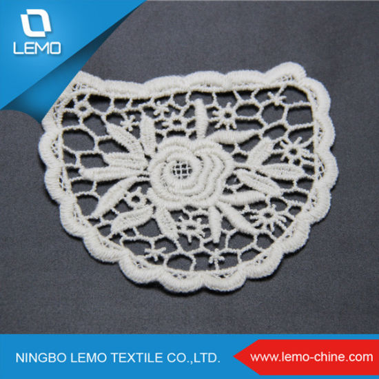 Lace Embroidery Embroidered Lace Embroidered Lace pictures & photos