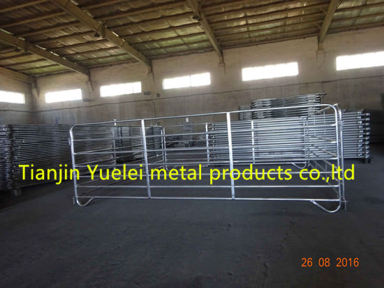 Galvanized Cattle Panels on Sale pictures & photos