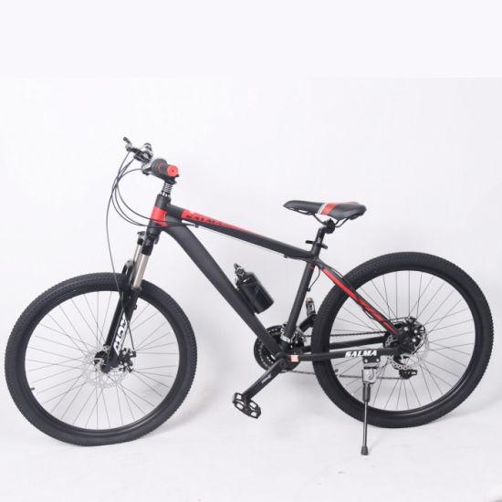 Aluminum Alloy Suspension 24 Speed Customized Mountain Bike