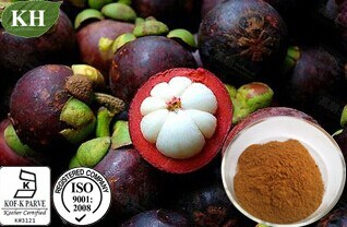 Kingherbs′ 100% Natural Mangosteen Extract: 10%, 20%, 30%, 90% Alpha-Mangostin HPLC; 20%, 27% Polyphenol UV; pictures & photos