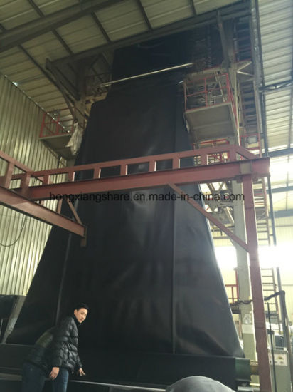 HDPE Geomembrane for Earthwork International Geosynthetics pictures & photos