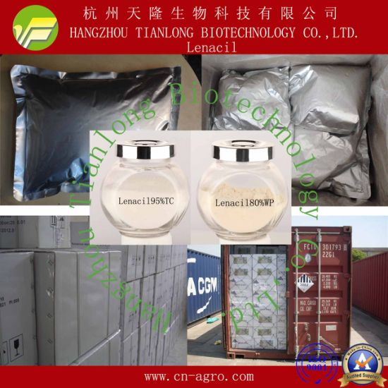 Good Quality Herbicides Lenacil (95%TC, 80%WP, 90%WDG)