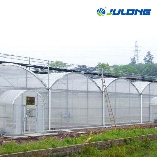 Low Cost Agricultural Aquaponic Kits Commercial Greenhouses Price