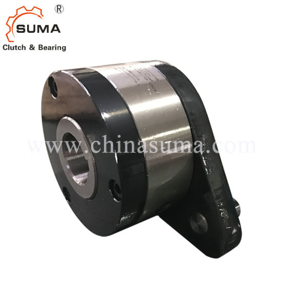 One Way Backstop Clutch Bearing (Cam Clutch) (RIZG2G3) pictures & photos